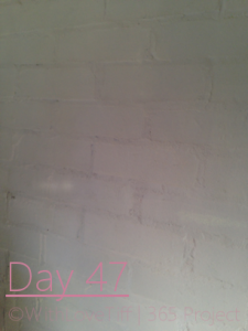 day47