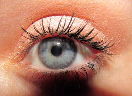 Bronzeeye