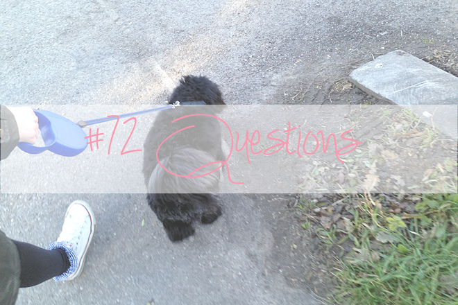 #72 Questions | WithLoveTiff
